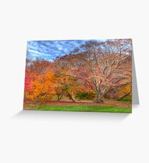 Fall Branches Greeting Card