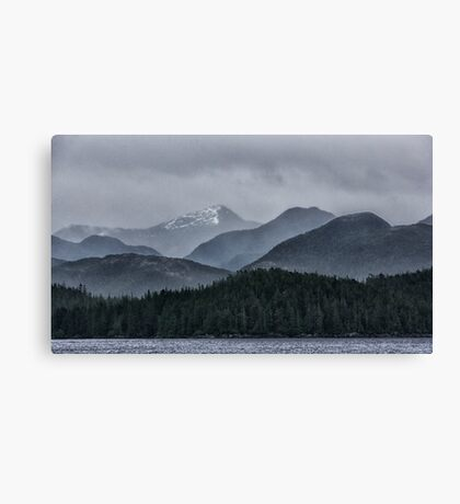 So Gray Canvas Print
