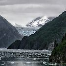 Alaskan Glacier by Michael  Moss