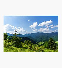 Impressions of Mountains and Forests and Trees Photographic Print