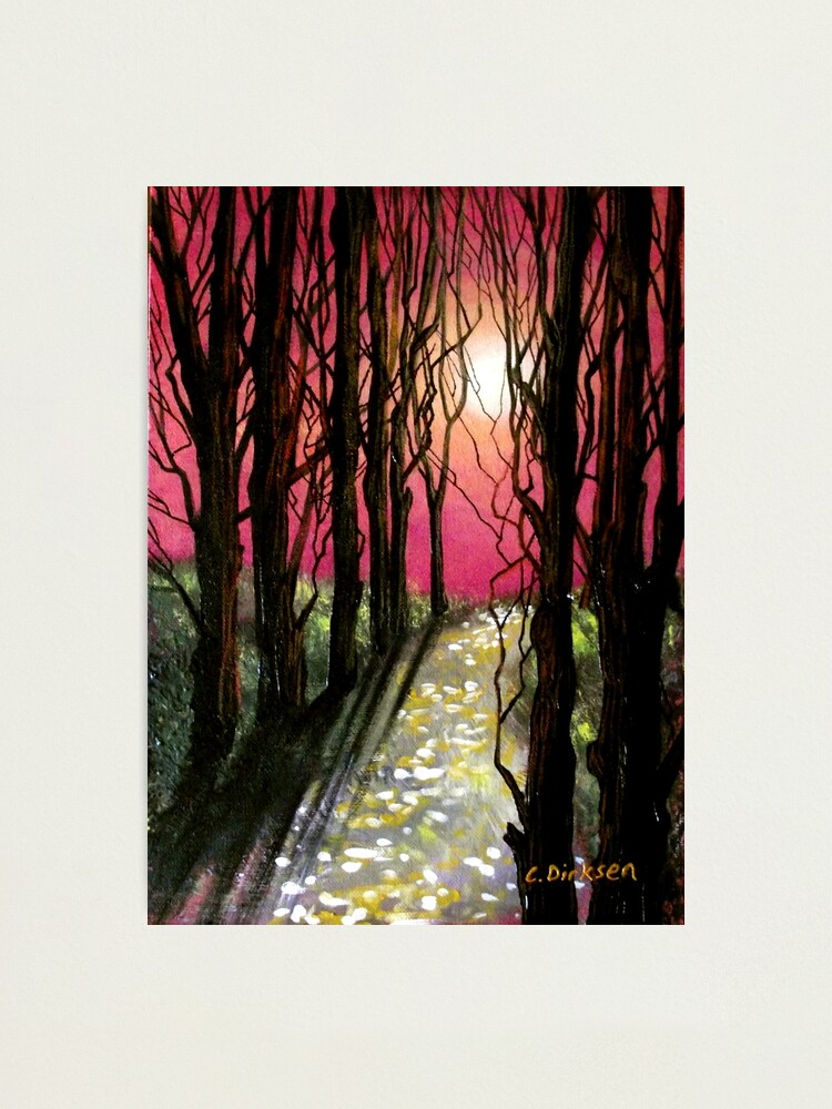 Alternate view of Moonlit Forest Photographic Print