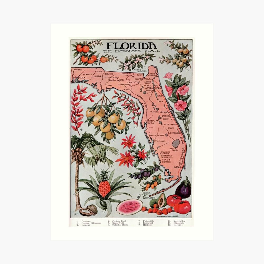 Vintage Karte von Florida (1917) Kunstdruck