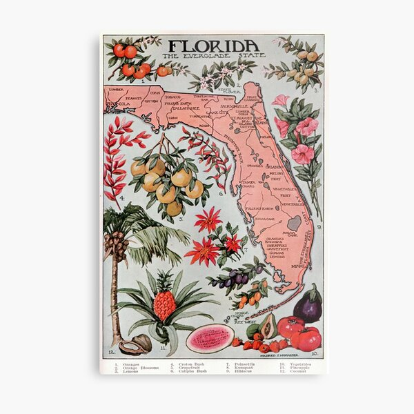 Vintage Map of Florida (1917) Metal Print