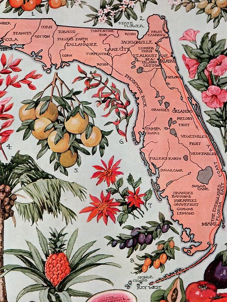 Vintage Karte von Florida (1917) von BravuraMedia