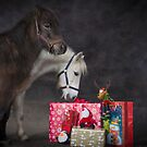 Merry Little Christmas  by Dan Shalloe