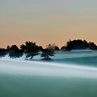 The Ground Fog........late Afternoon by Imi Koetz