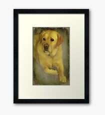 """Any Christmas Treats for ME ?..."" Framed Print"