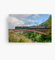 Taw Valley over the Severn Valley Canvas Print