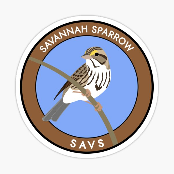 Savannah Sparrow Sticker