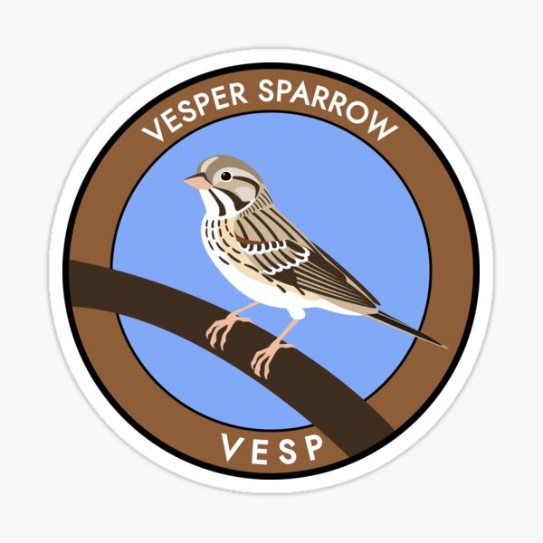 Vesper Sparrow Sticker
