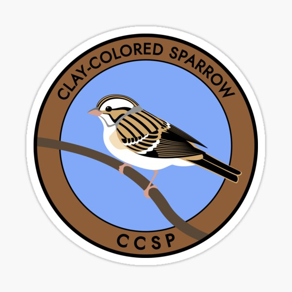 Clay-colored Sparrow Sticker