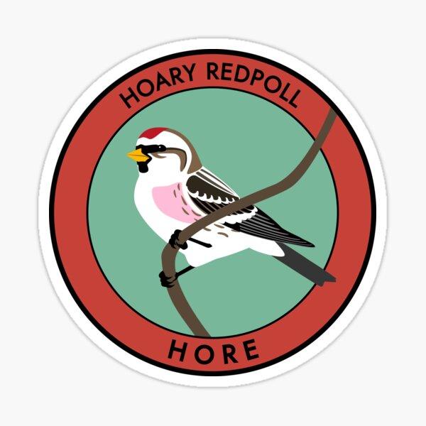 Hoary Redpoll Sticker