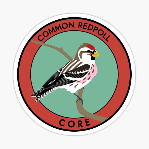 Common Redpoll Sticker