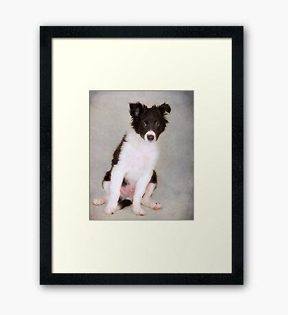 Bogey Framed Print