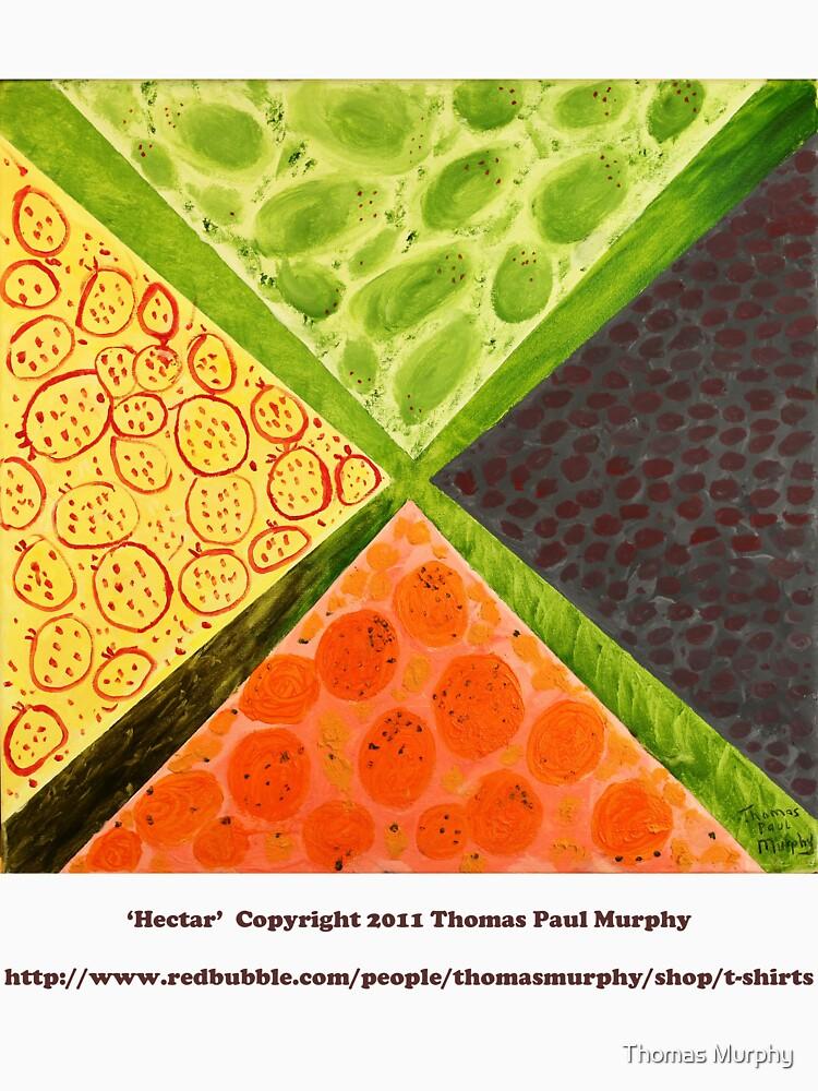 Hectar by ThomasMurphy