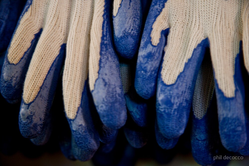 Udderly Blue, Knit Gloves by phil decocco