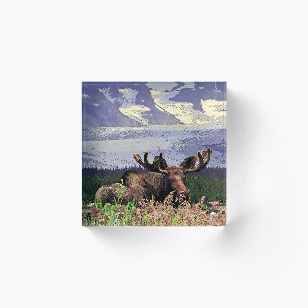 Glacier Moose Acrylic Block