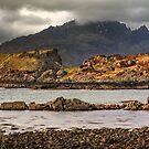 Dun Sgathaich Castle by Karl Williams