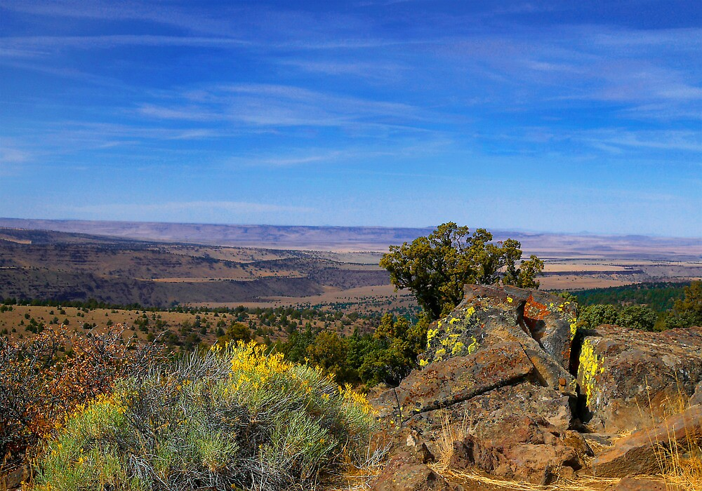 High In The Steens by Charles & Patricia   Harkins ~ Picture Oregon