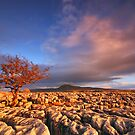 Sunset in the Yorkshire Dales by Robin Whalley