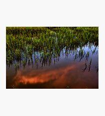 Tideland Reflection Photographic Print