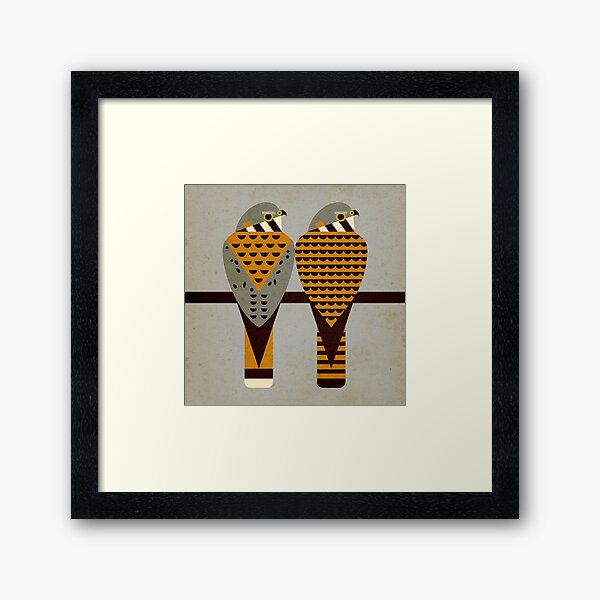 Kestrels Framed Art Print