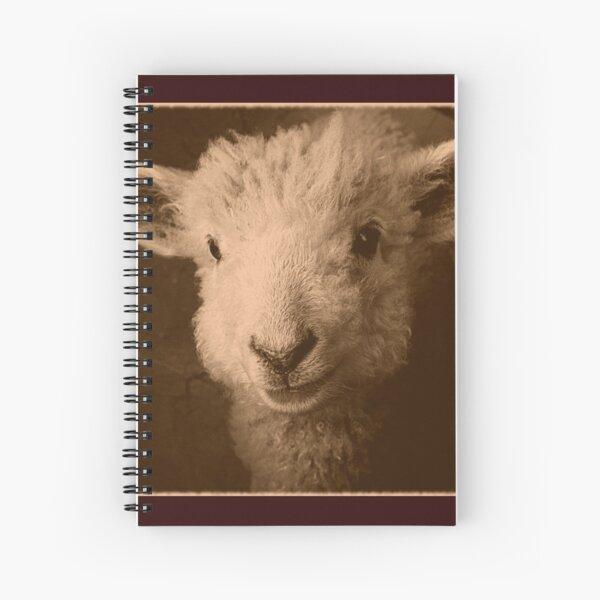 REDREAMING LAMB 2 Spiral Notebook