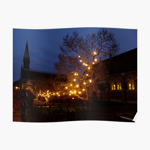 Christmas Lights at St. Mary's Poster