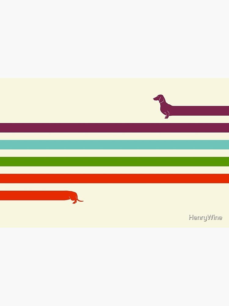 (Very) Long Dachshund by HenryWine