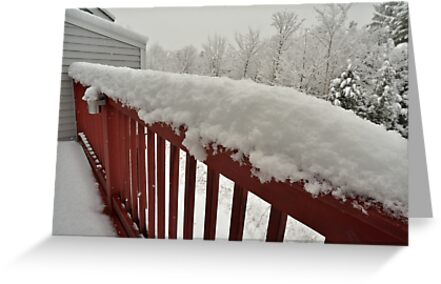 First snow of the season comes to the New England by Anton Oparin