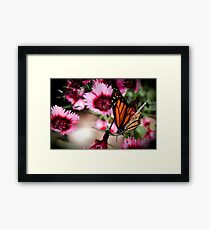 Fuchia Floria Framed Print