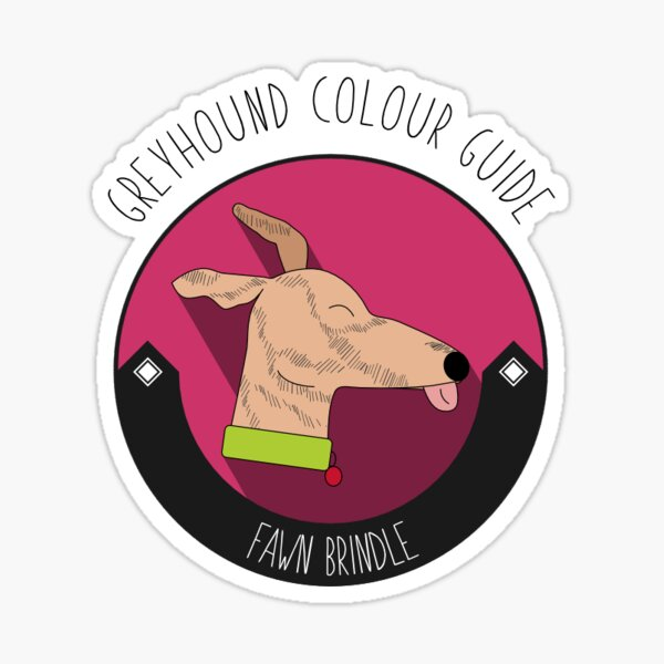 Greyhound Colour Guide - Fawn Brindle Sticker