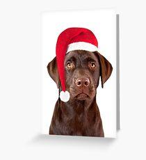 Christmas Labrador Dog Greeting Card