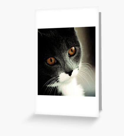 Brown eyes Greeting Card