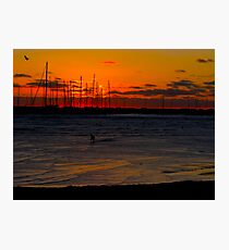 Gulls on the Wind Photographic Print