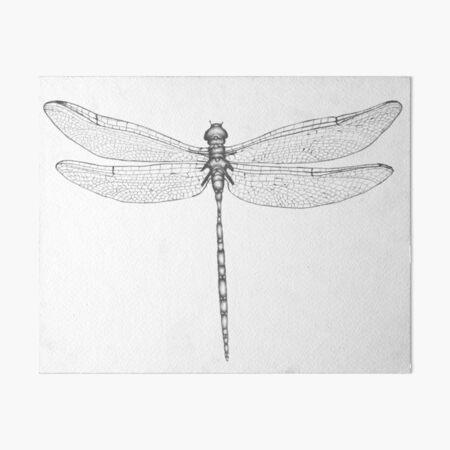 Dragonfly Wings Art Board Print