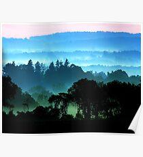 Stillwell Morning Mist Poster
