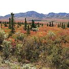 Permafrost Taiga and Tundra Colours by Braedene
