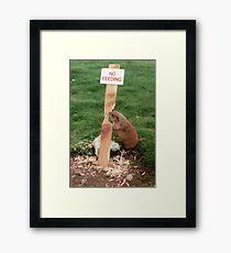 Clever Critter Framed Print