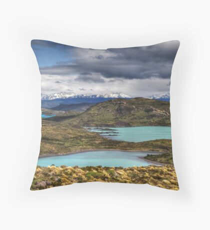 The Lakes of Torres del Paine #1 Throw Pillow
