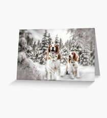Bark the Herald Angels Sing...... Greeting Card