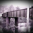 Still Crossings  by Paul Lubaczewski
