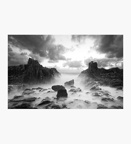 Wild World Photographic Print