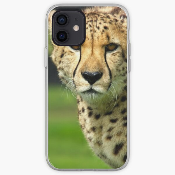 Cheetah - Face to Face - 38,585 Views iPhone Soft Case