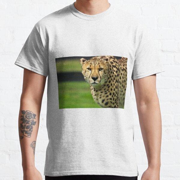 Cheetah - Face to Face - 38,585 Views Classic T-Shirt