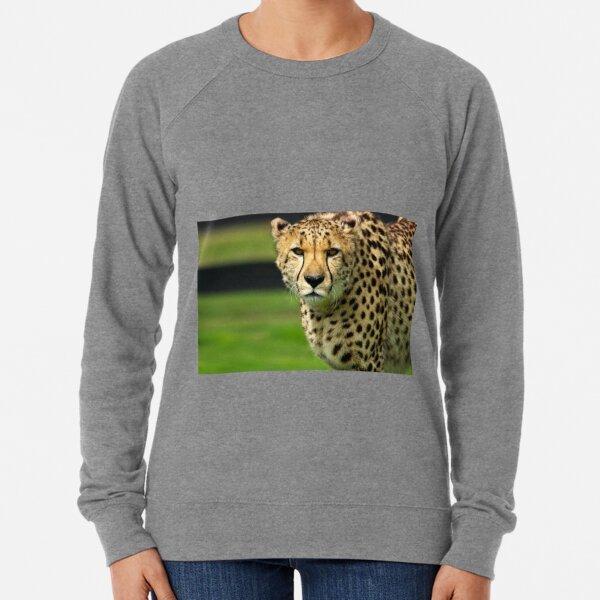 Cheetah - Face to Face - 38,585 Views Lightweight Sweatshirt