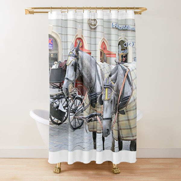Disney Horse Drawn Carriages Princess Cinderella Shower Curtain 100/% Polyester