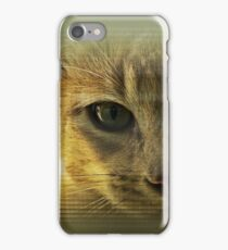 Community Cat iPhone Case/Skin