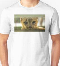 Community Cat T-Shirt