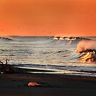 Fiery Waves by Mariann Kovats